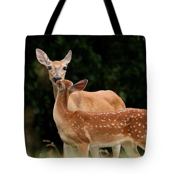 A Tender Moment Tote Bag by Sheila Brown