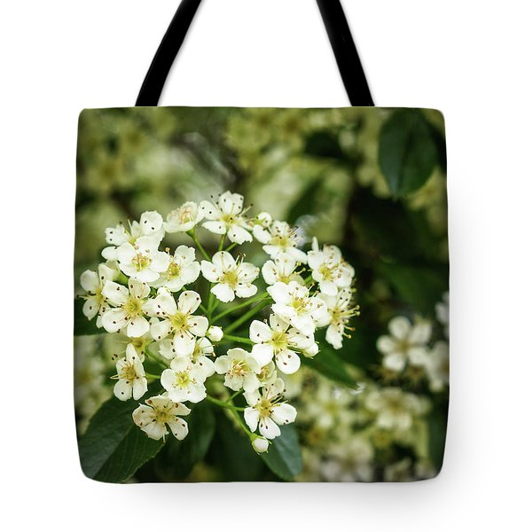A Thousand Blossoms Tote Bag