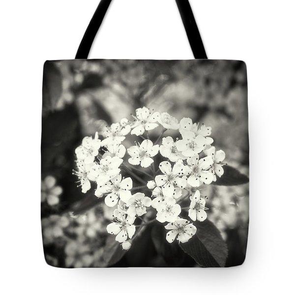 A Thousand Blossoms Sepia 3x2 Tote Bag