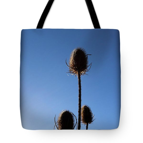 Tote Bag featuring the photograph A Thriving Trio 2 by Helga Novelli