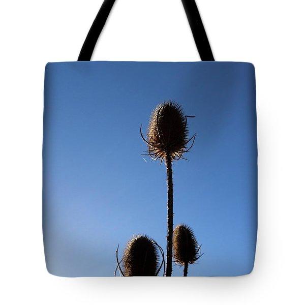 A Thriving Trio 2 Tote Bag