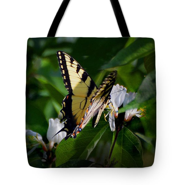 A Tiger Swallowtail Tote Bag