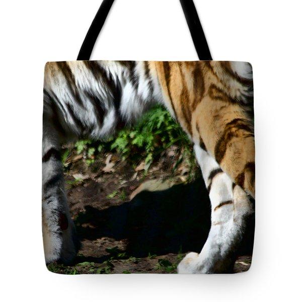 A Tigers Stride Tote Bag by Karol Livote