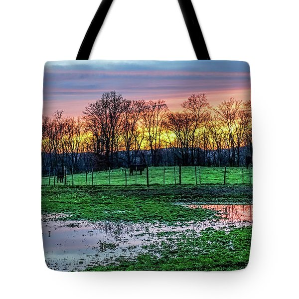 A Time For Reflection Tote Bag by Jeffrey Friedkin