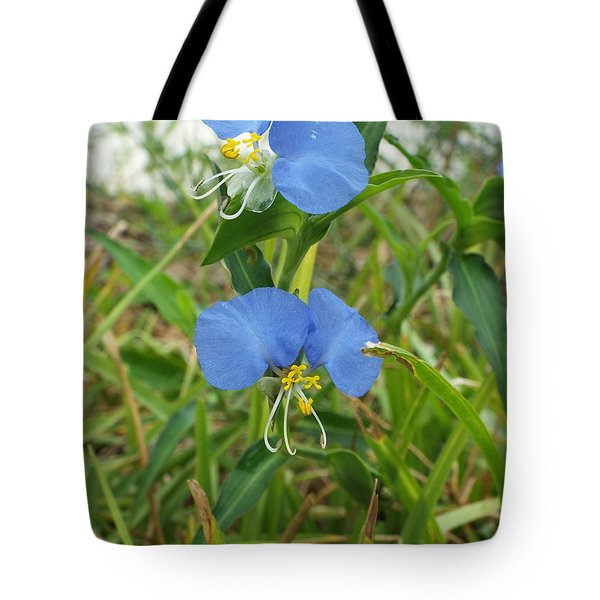 A Touch If Ice Tote Bag by Audrey Van Tassell