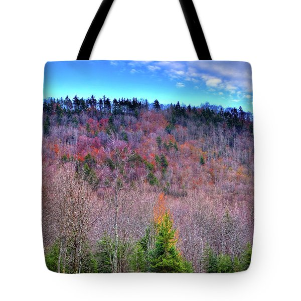 Tote Bag featuring the photograph A Touch Of Autumn by David Patterson