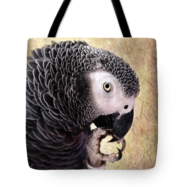 Tote Bag featuring the photograph A Touch Of Grey by Betty LaRue
