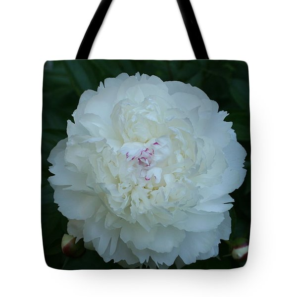 Tote Bag featuring the digital art A Touch Of Pink by Barbara S Nickerson