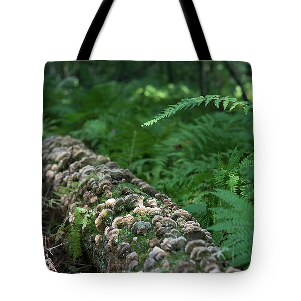 A Touch Of Sun Tote Bag