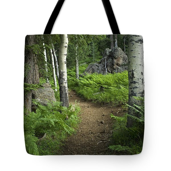 A Tranquil Path  Tote Bag by Sue Cullumber