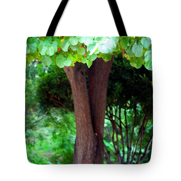 Tote Bag featuring the photograph A Tree Lovelier Than A Poem by Madeline Ellis