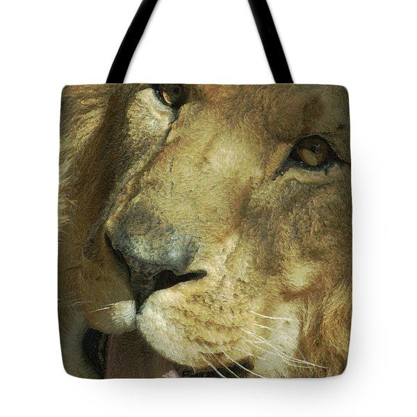 A Tribute To Elson 3 Tote Bag by Ernie Echols