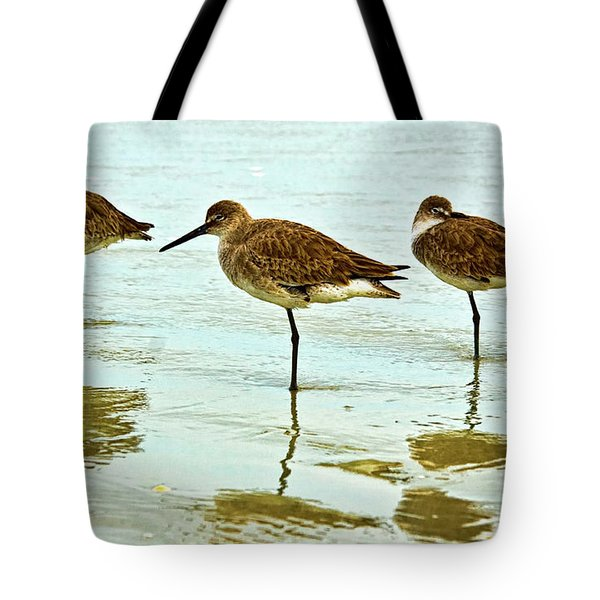 A Trio Tote Bag by Christopher Holmes