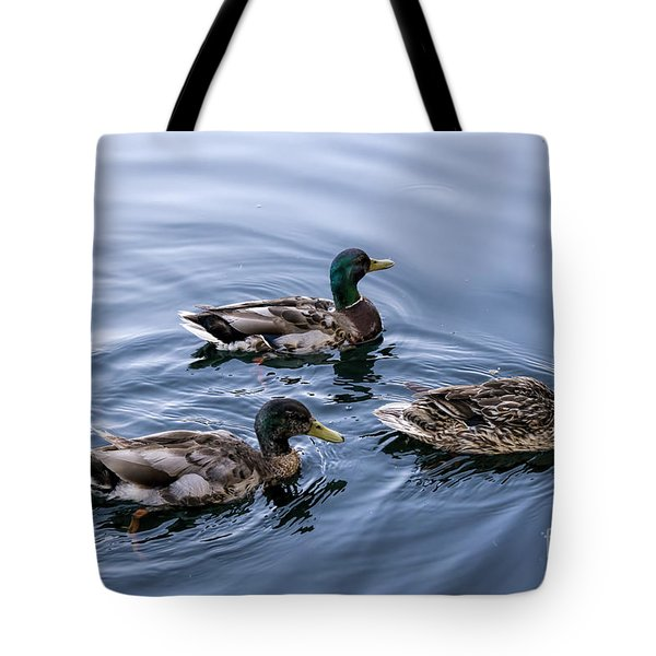A Trio Of Mallards Tote Bag