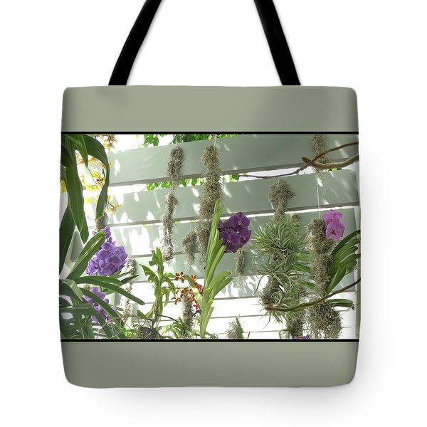 A Trio Of Orchids Tote Bag