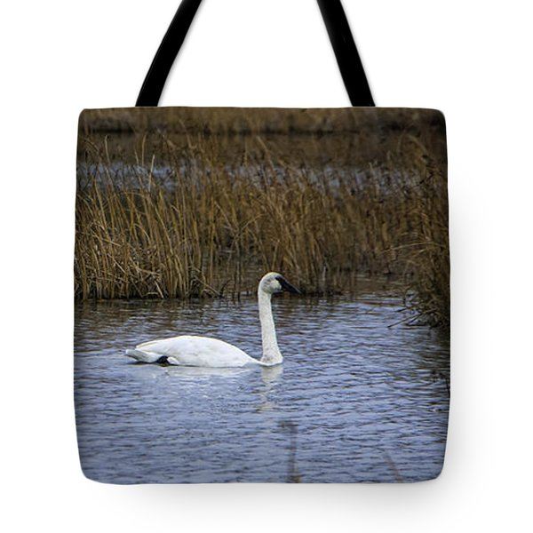 A Trio Of Swans Tote Bag
