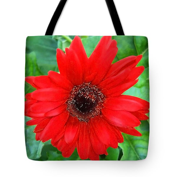 Tote Bag featuring the photograph A True Red by Sandi OReilly