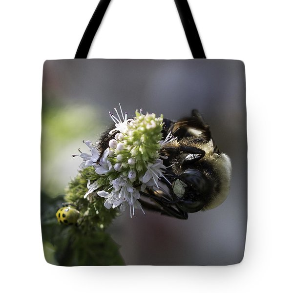 A Twofer Tote Bag