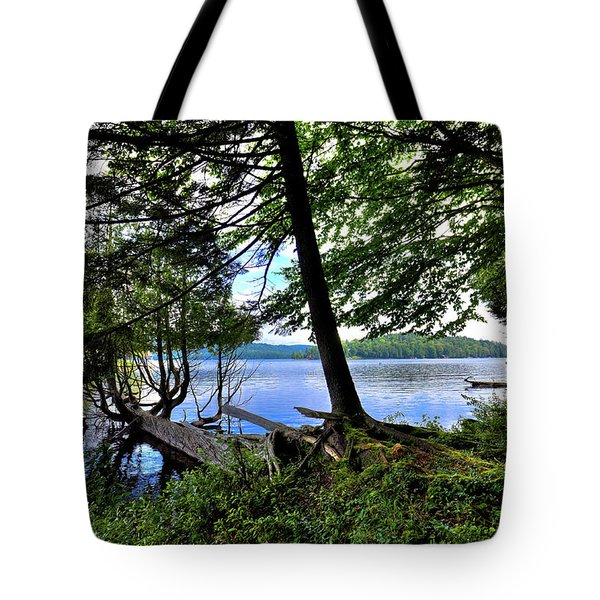 Tote Bag featuring the photograph A View From Covewood by David Patterson