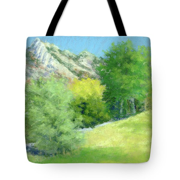 A View From Murray Park Tote Bag