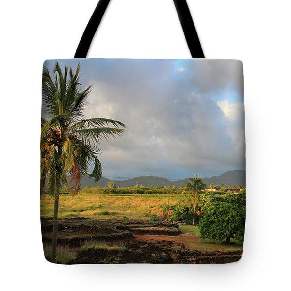 A View Of Prince Kuhio Park Tote Bag by Bonnie Follett