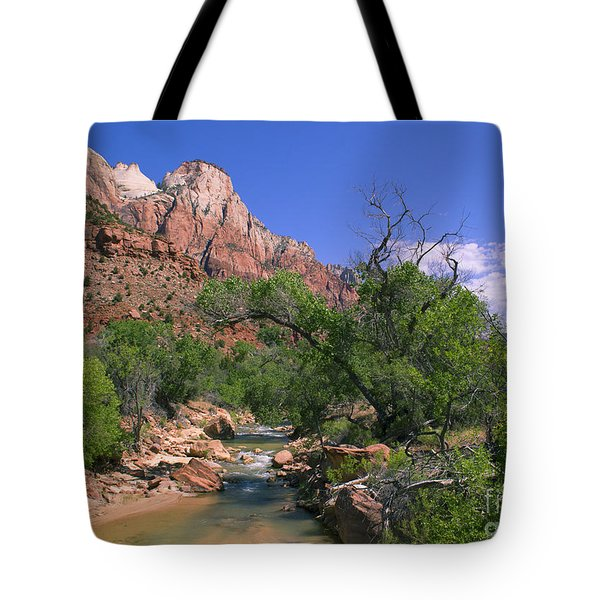 Tote Bag featuring the photograph A Virgin In Zion by Suzette Kallen