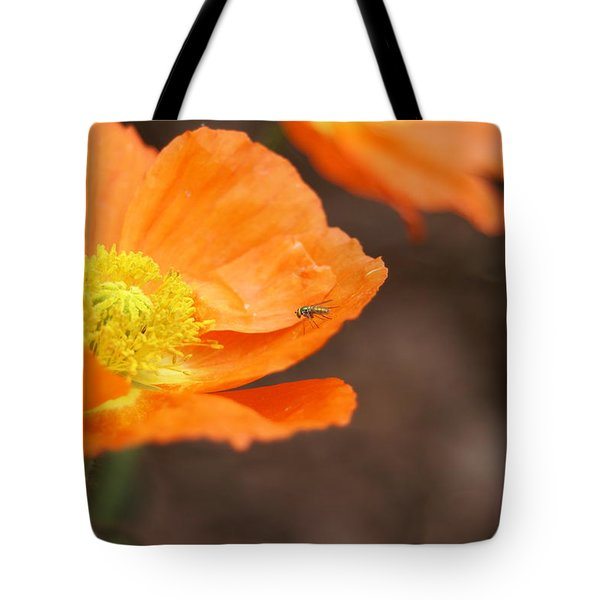 A Visitor Tote Bag