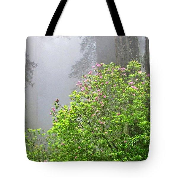 A Walk Alone Tote Bag