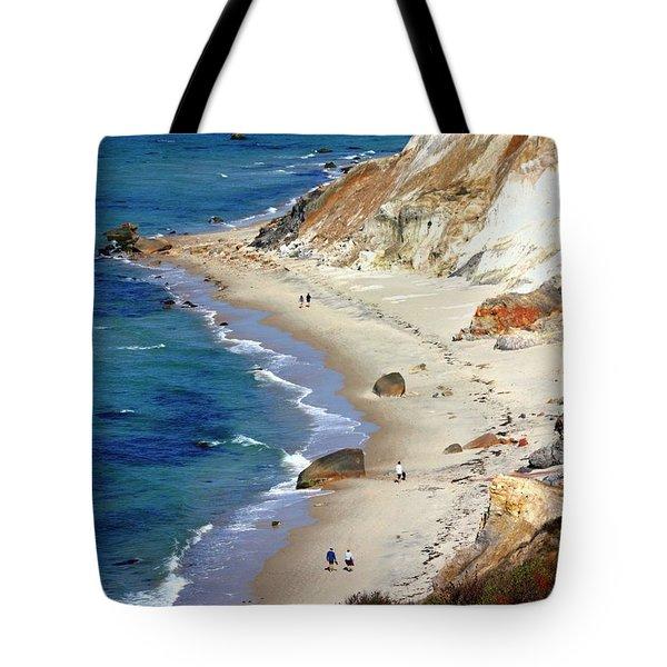 A Walk Along Aquinnah Beach Tote Bag by Carol Groenen