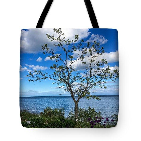 A Walk Along Lake Michigan Tote Bag