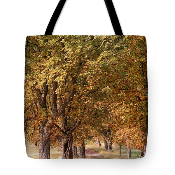 A Walk In The Countryside Tote Bag