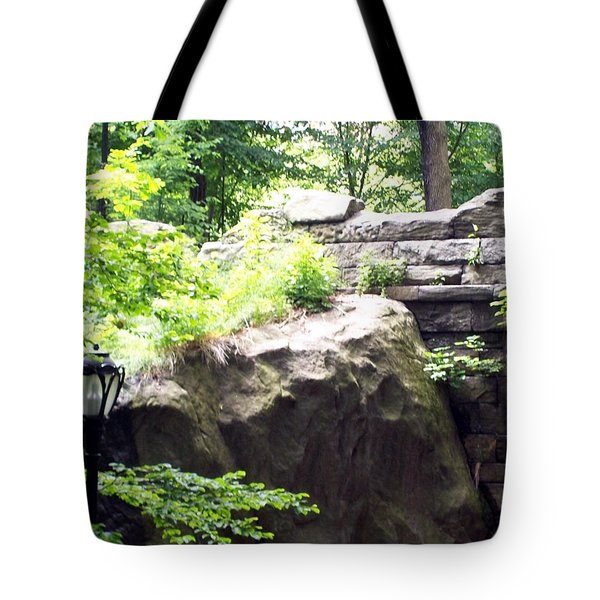 Tote Bag featuring the photograph A Walk In The Park by Lola Connelly