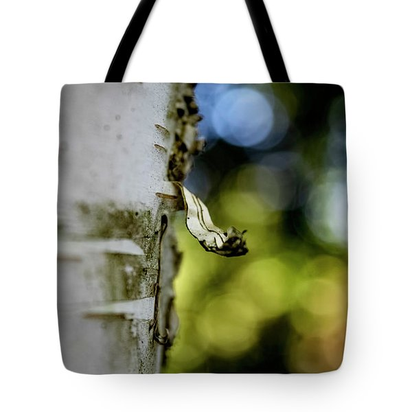 A Walk In The Woods Is Good For The Soul Tote Bag