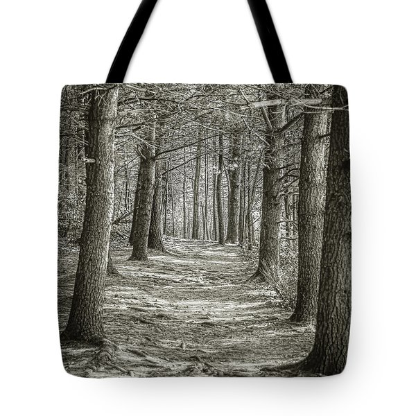 A Walk In Walden Woods Tote Bag by Ike Krieger
