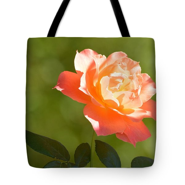 Tote Bag featuring the photograph A Well Lighted Rose by AJ Schibig