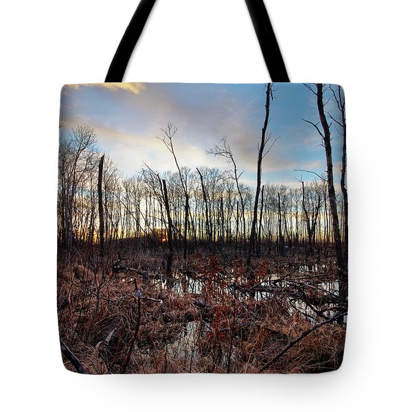 A Wet Decay Tote Bag