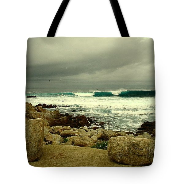 Tote Bag featuring the photograph A Winter Day At The Beach by Joyce Dickens