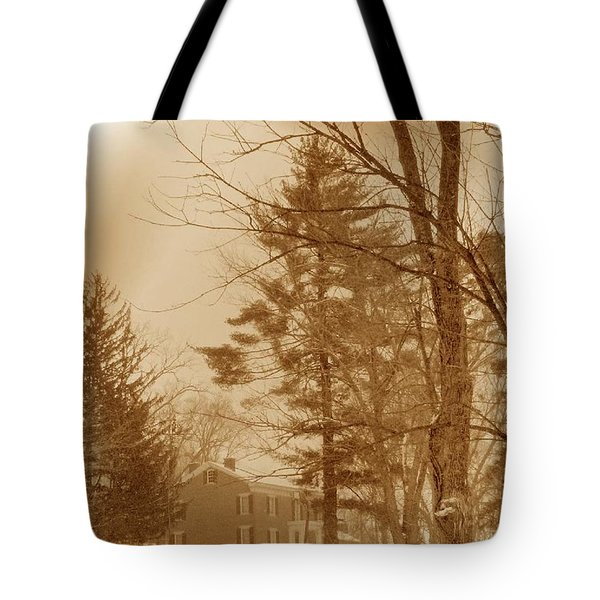 Tote Bag featuring the photograph A Winter Scene by Skyler Tipton