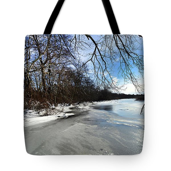 A Winters Day Tote Bag by Diane Giurco