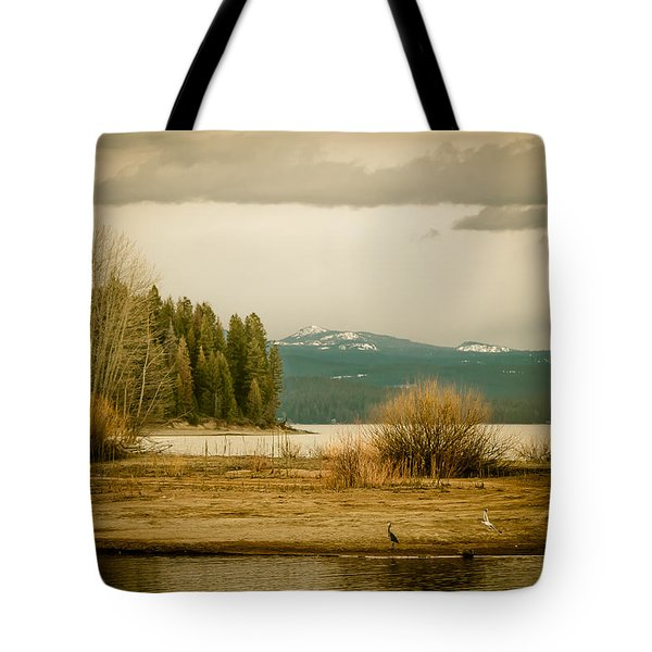 Tote Bag featuring the photograph A Winter's Idyll by Jan Davies