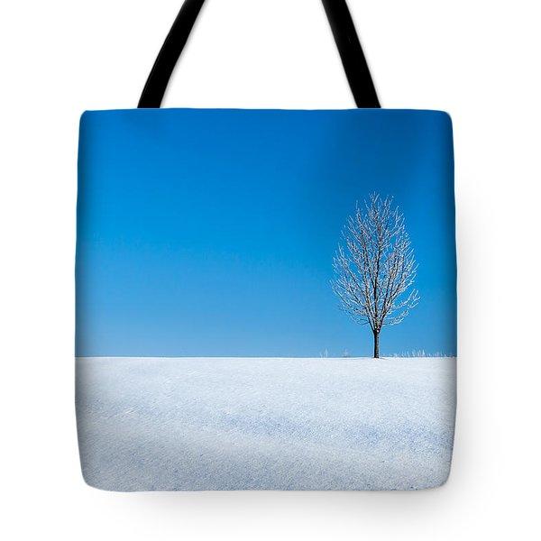 A Winter's Landmark Tote Bag