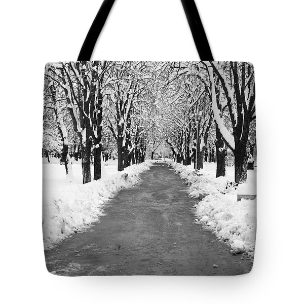 A Winter's Path Tote Bag by Rae Tucker