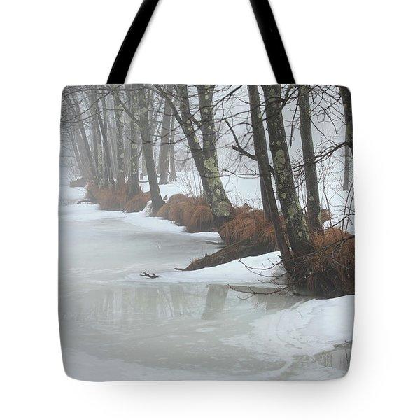 A Winter's Scene Tote Bag by Karol Livote