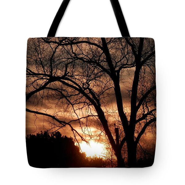 A Wisconsin Sunset Tote Bag by William Presley