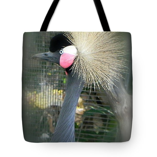 Tote Bag featuring the photograph A Wonder by Peggy Stokes
