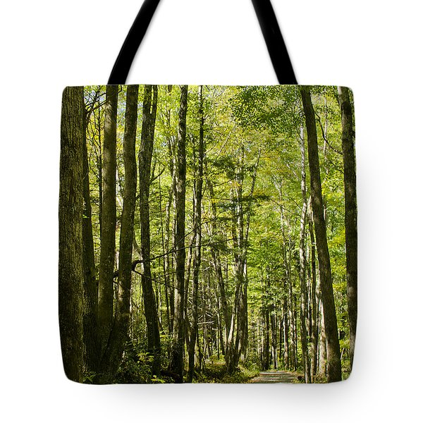 Tote Bag featuring the photograph A Woodsy Trail by Wanda Krack