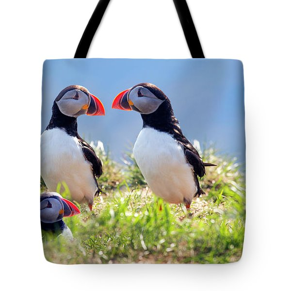 A World Of Puffins Tote Bag