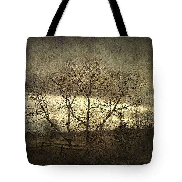 A Wyeth Landscape Tote Bag by Cynthia Lassiter