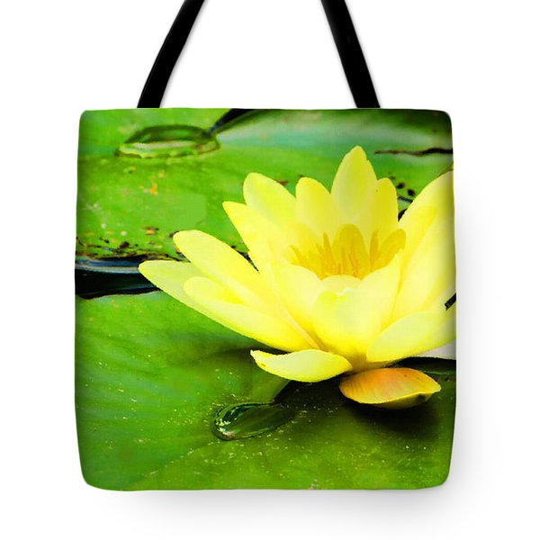 Tote Bag featuring the photograph A Yello Nympheas by MaryJane Armstrong
