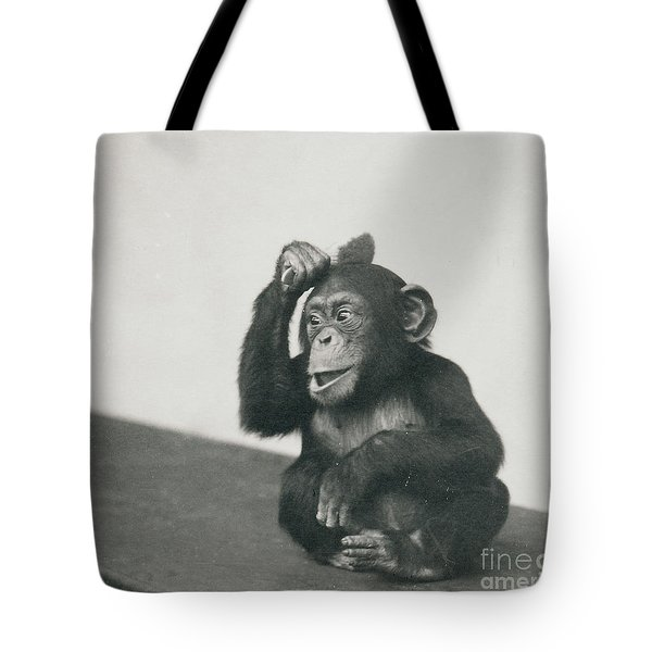 A Young Chimpanzee Playing With A Brush Tote Bag